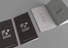 Popsible Group | Brand Identity Planning & Design | collaterals design